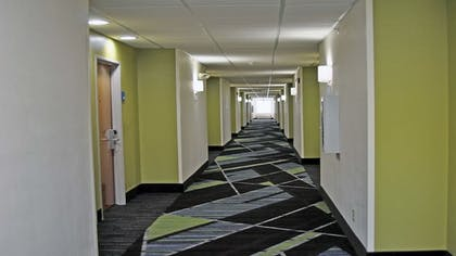 Hallway | Holiday Inn Express Henderson N Evansville South