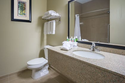 In-Room Amenity | Holiday Inn Express Hotel & Suites St. Paul-Woodbury