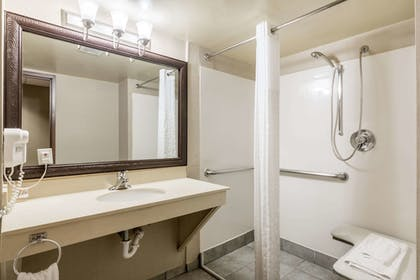 Bathroom | Comfort Suites Austin Airport
