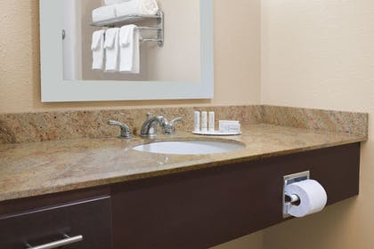 Bathroom Amenities | TownePlace Suites by Marriott Lake Jackson Clute