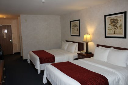 Guestroom | Comfort Inn Conference Center Tumwater - Olympia