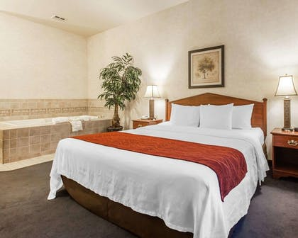 Room | Comfort Inn Conference Center Tumwater - Olympia