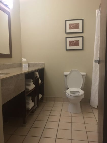 Bathroom | Comfort Suites NE Indianapolis Fishers