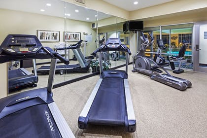 Fitness Facility | Holiday Inn Express Hotel & Suites Houston-Downtown Conv Ctr