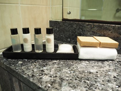 Bathroom Amenities | Croydon Park Hotel