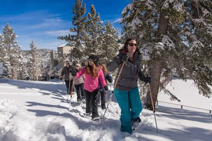 Snow and Ski Sports | The Ridge Tahoe