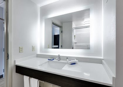 Bathroom | Holiday Inn Express & Suites I-16