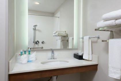 Bathroom | Holiday Inn Express Hotel and Suites Research Triangle Park