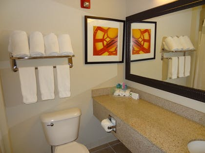 Bathroom | Holiday Inn Express Hotel & Suites Columbus-Groveport