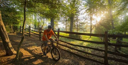 Bicycling | Williamsburg Lodge, Autograph Collection