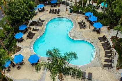 Pool | Staybridge Suites Anaheim-Resort Area