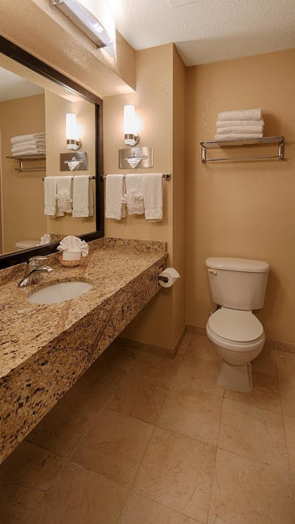 Bathroom | Best Western Governors Inn & Suites