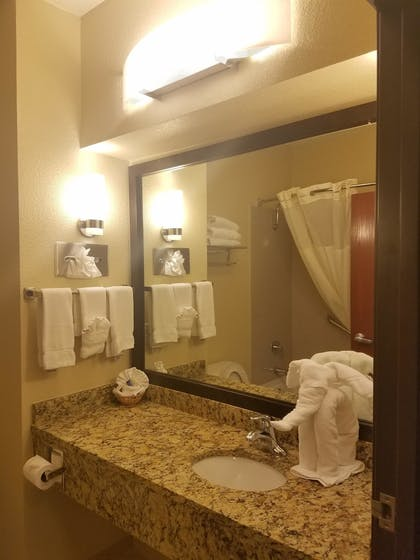 Bathroom Sink | Best Western Governors Inn & Suites
