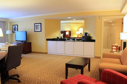 Room | St. Petersburg Marriott Clearwater