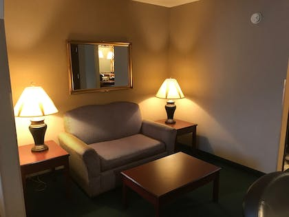 Living Area | Clarion Hotel - Downtown - University Area