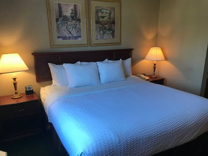Room | Clarion Hotel - Downtown - University Area