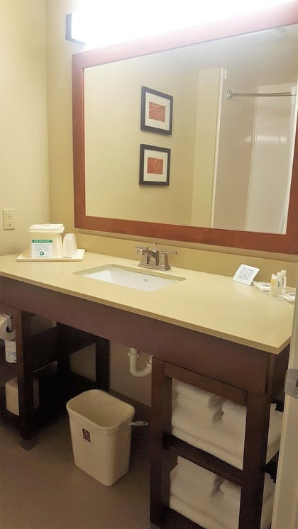 Bathroom | Comfort Suites Austin NW Lakeline