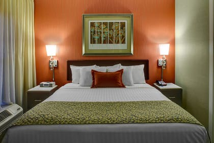 Guestroom | Springhill Suites By Marriott Memphis Downtown