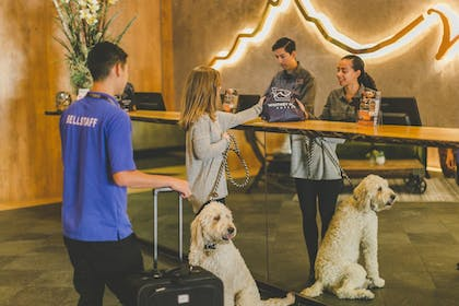 Check-in/Check-out Kiosk | Whitney Peak Hotel