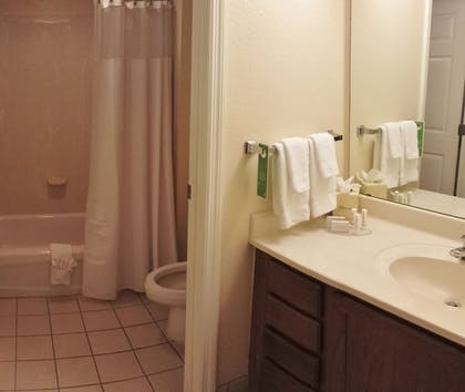 Bathroom | TownePlace Suites by Marriott Orlando East/UCF Area