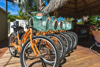 Bicycling | Tropical Breeze Resort by SKLRP
