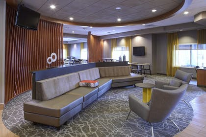 Lobby   SpringHill Suites by Marriott Frankenmuth
