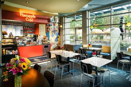 Cafe | Staypineapple, Watertown, University District Seattle