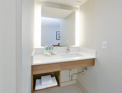 Bathroom Amenities | Holiday Inn Express & Suites Irving Conv Ctr - Las Colinas