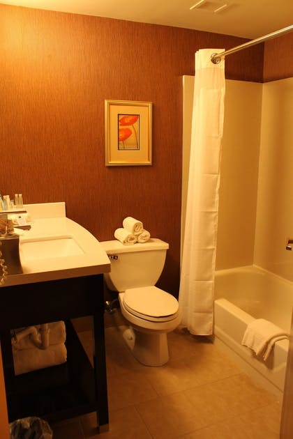 Bathroom | Holiday Inn Express Lewisburg/New Columbia