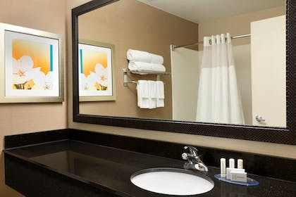 Bathroom | Fairfield Inn & Suites by Marriott Dallas Mesquite
