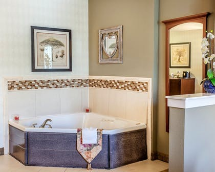 In-Room Amenity |  | Comfort Suites Airport