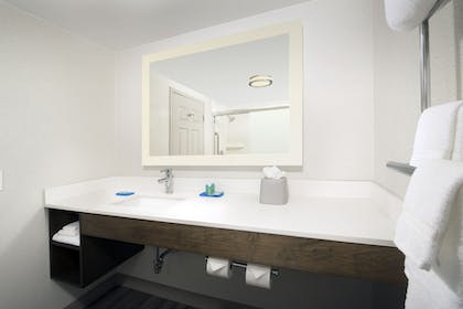 Bathroom | Holiday Inn Express & Suites Baltimore - BWI Airport North