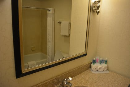 Bathroom | Holiday Inn Express & Suites Lancaster