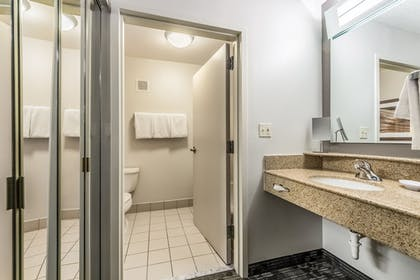 Bathroom | Courtyard by Marriott Dallas DFW Airport South/Irving
