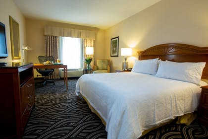 | 1 King Bed 1 Bedroom Suite Sofabed | Hilton Garden Inn Charleston Airport