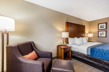 Room | Comfort Inn & Suites Airport-American Way