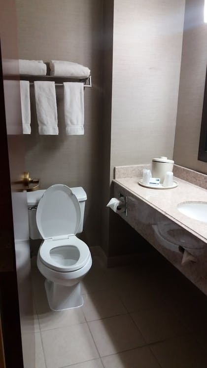 Bathroom | Holiday Inn Express Hotel & Suites Waterford