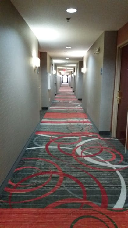 Hallway | Holiday Inn Express Hotel & Suites Waterford