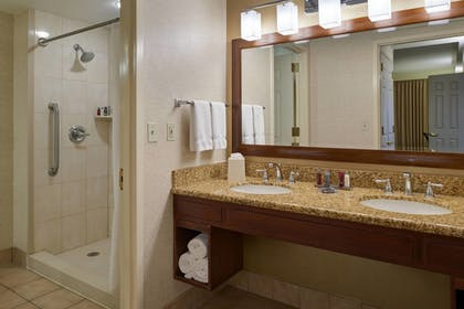 | Suite, 1 Bedroom, Jetted Tub | Chicago Marriott Midway