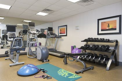Fitness Facility | Holiday Inn Express Hotel & Suites Grand Rapids-North