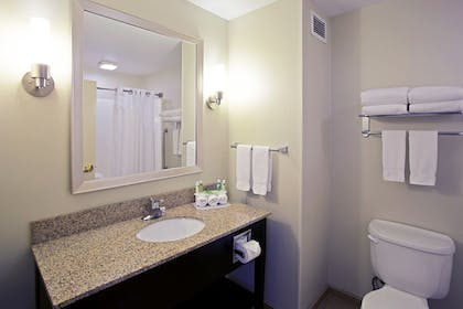 Bathroom | Holiday Inn Express Hotel & Suites Grand Rapids-North