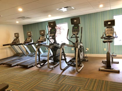Fitness Facility | Holiday Inn Express Hotel & Suites Great Barrington
