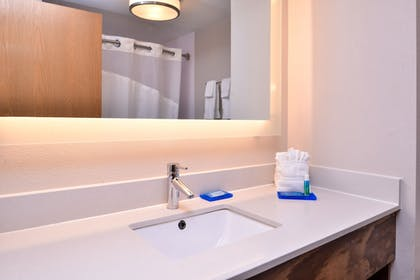 Bathroom | Holiday Inn Express Hotel & Suites Tampa-Anderson Rd/Veteran