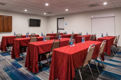 Meeting Facility | Holiday Inn Express Hotel & Suites Tampa-Anderson Rd/Veteran