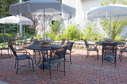 Terrace/Patio | Best Western Plus Cold Spring