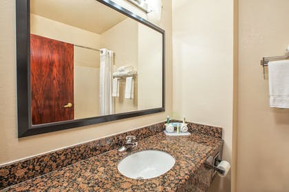 Bathroom | Holiday Inn Express Hotel and Suites Marysville