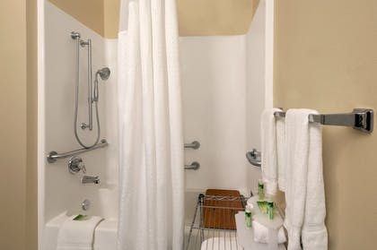 Bathroom Shower | Holiday Inn Express Hotel and Suites Marysville