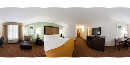 Guestroom | Holiday Inn Express Hotel & Suites Harrington-Dover area, DE