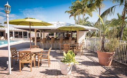 Poolside Bar | Skipjack Resort Suites & Marina