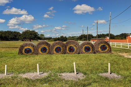 Archery | Westgate River Ranch Resort & Rodeo